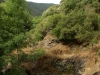 Tordera River - Walk from Montseny to Taganament