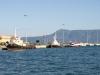 Fast ferry Kristi to Saranda Albania in Corfu port